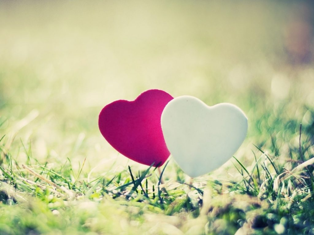heart-grass-couple-close-up